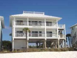 Turtle Watch C - Mexico Beach vacation rentals