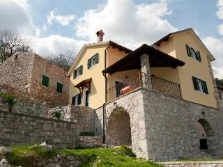 Amazing villa with a pool, Opatija, Istria - Cepic vacation rentals