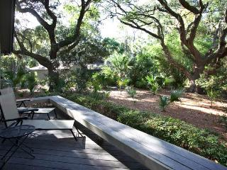 Nice 3 bedroom House in Hilton Head - Hilton Head vacation rentals