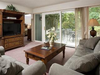 Hickory Cove 39 - Hilton Head vacation rentals