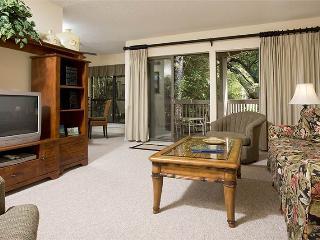 Lighthouse Tennis 2374 - Hilton Head vacation rentals