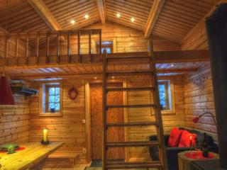 Cottage on Wild River in Lapland/Sweden - Sorsele vacation rentals