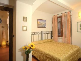 Apartment Stella in center of Florence - Florence vacation rentals