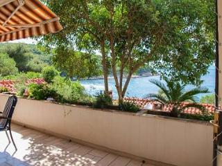 6131 A1(4+2) - Postira - Postira vacation rentals