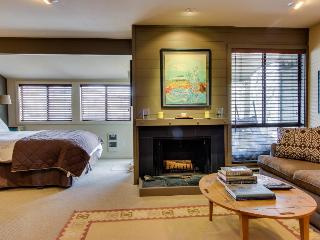 Cottonwood Modern Studio Condo - Sun Valley vacation rentals