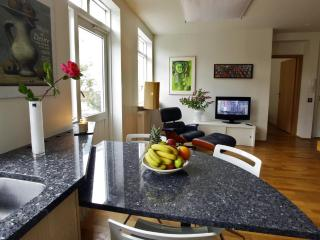 Bright Condo with Deck and Internet Access - Reykjavik vacation rentals