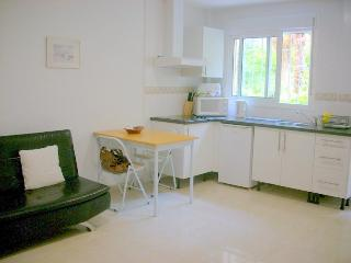 WHEEL CHAIR FRIENDLY APT, LA CARIHUELA, MALAGA - Malaga vacation rentals