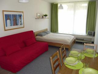 Comfortable 1 bedroom Apartment in Harrachov - Harrachov vacation rentals
