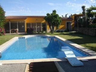Elegant Villa with Swimming Pool - Braga vacation rentals