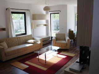 Carpathian (Bran) Holiday Villa - Craiasa Branului - Bran vacation rentals