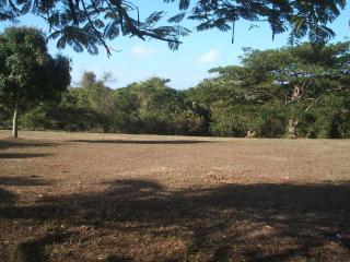 Andrea's House Rental in Vieques - Isla de Vieques vacation rentals
