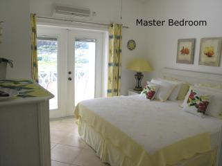 OLEANDER-Beautiful Beachfront Condo-1 or 2 bedroom - Frigate Bay vacation rentals