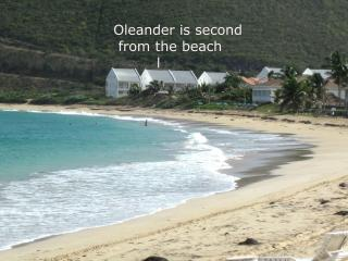 OLEANDER-Beautiful Beachfront Condo-1 or 2 bedroom - Frigate Bay vacation rentals