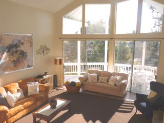 Chic Mountain Home in Lake Arrowhead - Lake Arrowhead vacation rentals