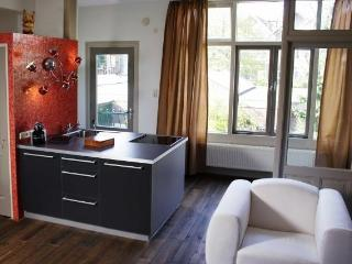 Short Stay Apartment Dependance Rotterdam - Zuid-Holland vacation rentals