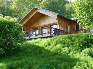 Twin Puffins: 2 BDRM Secluded Cabin w/Great Views - Homer vacation rentals