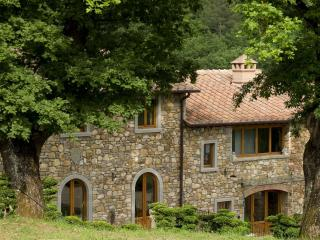 Beautiful 2 Bedroom Tuscan Apartment on the Hills - Pratovecchio vacation rentals