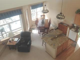 Premium Mountain Retreat near 5 ski resorts - Silverthorne vacation rentals