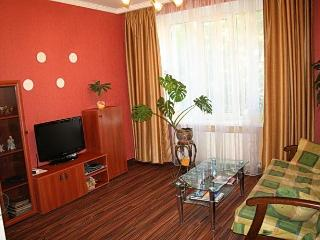 One-bedroom apartment in the centre of Odessa / ne - Odessa vacation rentals
