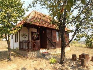 Brvnara Glisovic - Gornji Milanovac vacation rentals