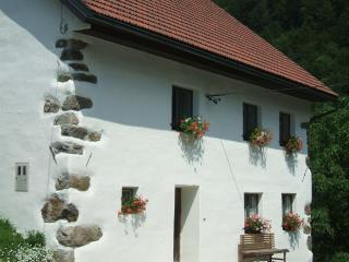 3 bedroom House with Satellite Or Cable TV in Tolmin - Tolmin vacation rentals