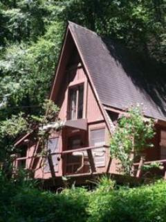 Smoky Mountain A-Frame - Smoky Mountains Maggie Valley A-Frame Cabin - Waynesville - rentals