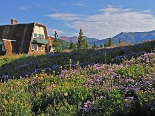 Your Wildflower HQ! Indoor Hot Tub, 360° Views - Crested Butte vacation rentals