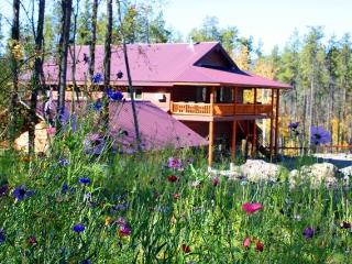 Ridgetop Retreat 1/2 mile from Glacier Nat'l Park - West Glacier vacation rentals