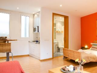 Sunny studio in Ribera - Barri Gòtic Barcelona 39 - managed by travelingtolisbon - United States vacation rentals