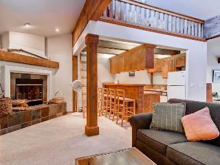 Blue Grouse F Ketchum River Run - Ketchum vacation rentals