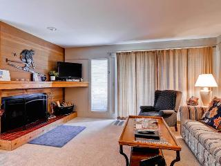 Greyhawk Condominiums 23 - Ketchum vacation rentals