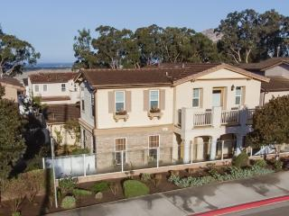 Elegant Newer Home Close to Bay and Downtown! 421 - Morro Bay vacation rentals