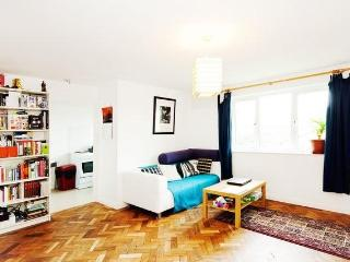 Fabulous 2 Bedroom London Apartment - London vacation rentals
