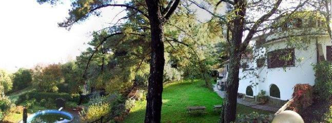 Villa and pool, second and third levels of the garden - Minutes from Rome! 3 bds unit in villa with pool - Formello - rentals