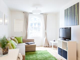 20% DISCOUNT! - Stylish Apartment with Free Wifi - London vacation rentals