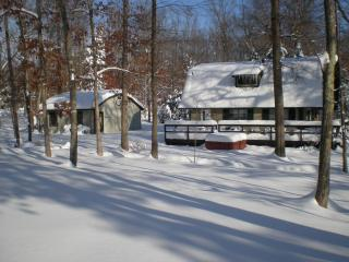 Nice House with Deck and Internet Access - Locust Grove vacation rentals
