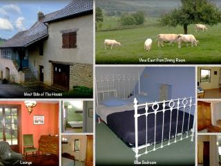The House at Le Gros Chigy - Rural Burgundy Across From a Chateau - France vacation rentals