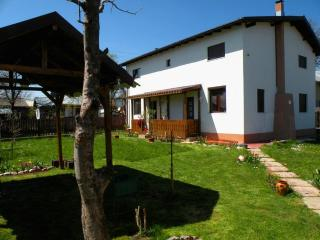 Casa Lavanda - Holiday house near Prahova Valley - Traisteni vacation rentals