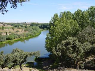 Comfortable Province of Salamanca vacation Villa with Dishwasher - Province of Salamanca vacation rentals