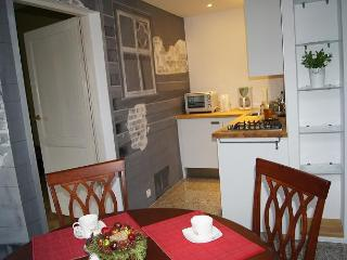 Artistic Apartment -cozy, nice, Old Town. Perfect. - Southern Poland vacation rentals