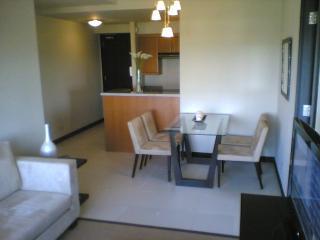 Luxury 2BR condo in Fort Bonifacio,Global City - National Capital Region vacation rentals