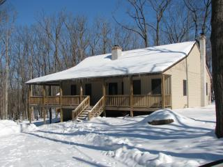 Nice House with Deck and A/C - Canadensis vacation rentals