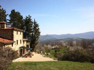 Tranquil farmhouse - stunning views & private pool - Pieve Santo Stefano vacation rentals