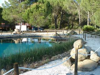 Beautiful Resort with Internet Access and A/C - Grandola vacation rentals