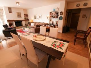 A Unique 3 Bedroom Apartment in Athens - Marousi vacation rentals