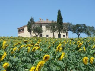 Villa Capezzine Vacation Rental in Lucca - Cortona vacation rentals
