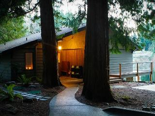 Inviting, Lakefront, modern home with impeccable views! 3 Bedrooms-Langley - Whidbey Island vacation rentals