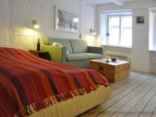 Magstræde - Absolute Center - 350 - Copenhagen vacation rentals