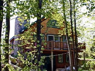 Cozy, rustic log cabin on Lake Champlain - Lake Champlain Valley vacation rentals