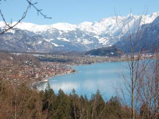 Chalet Sonnenblick - Apartment Sonnenblick 2 - Brienz vacation rentals